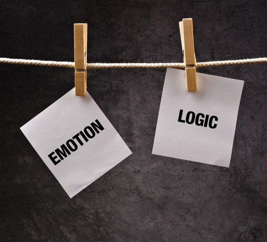 Emotion/Logic Pegs